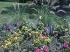 flowers-038