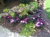 flowers-082