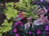 flowers-085