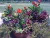 flowers-127