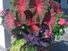 flowers-139