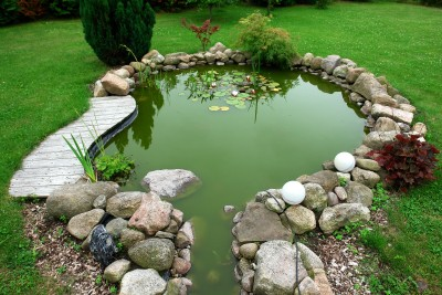 Beautiful classical design garden fish pond in a well cared backyard gardening background