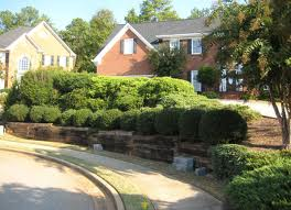 residential landscape for renovation