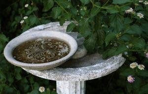 small fountain in backyard